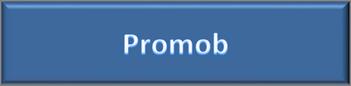 BTN_FIC_Promob